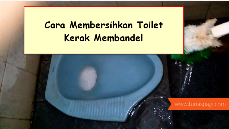 cara membersihkan toilet kerak membandel